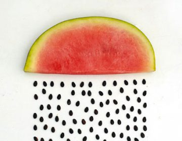 Watermelon Rain by Sarah Illenberger