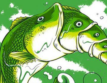 Illustrations by Hon Lam