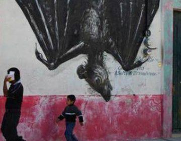 StreetArt in Mexico by ROA