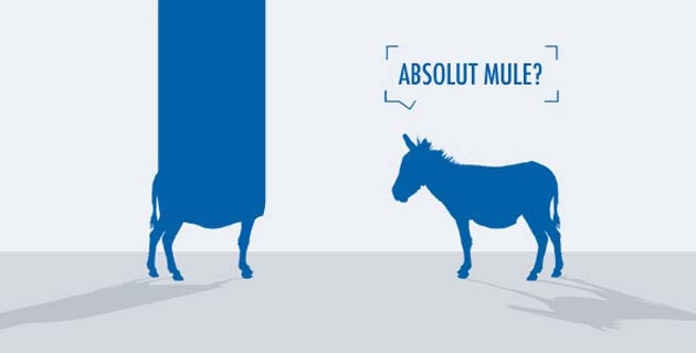 Crazy Old Mules | Illustrations