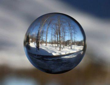 Life Through a Marble