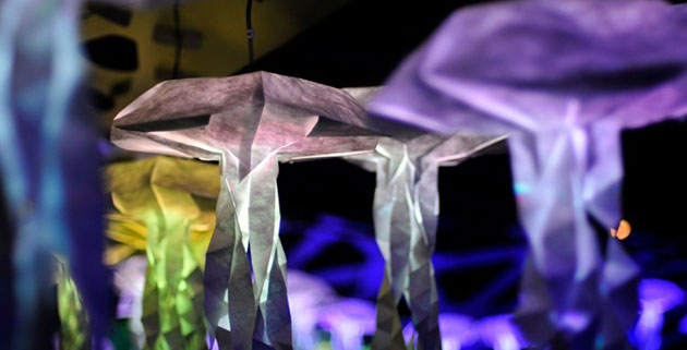 Interactive Jellyfish Swarm