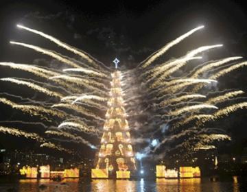 World's Highest Christmas Tree | Rio de Janeiro