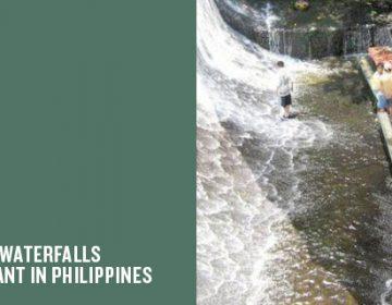 Villa Escudero | Waterfalls