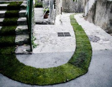 Green Carpet | Tapis Rouge