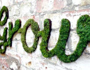Moss Graffiti Art | Anna Garforth