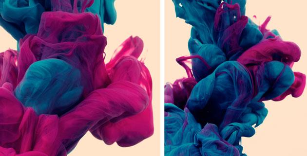 Due Colori | Alberto Seveso