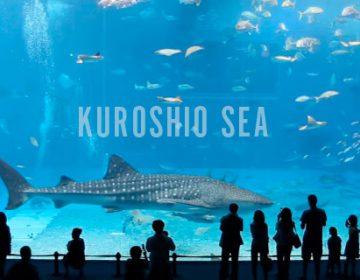 Kuroshio Sea