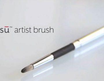 Sensu Brush | iPad