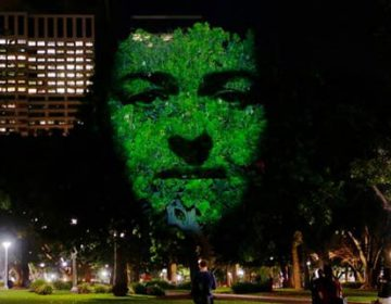3D Projection on Trees | Emergence
