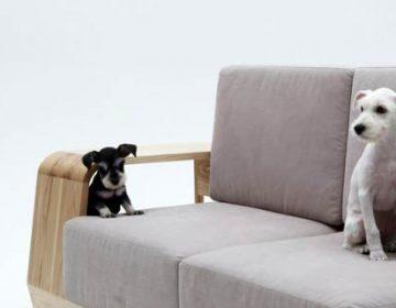 The Dog House Sofa | Seungji Mun