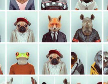 Zoo Portraits | Yago Partal