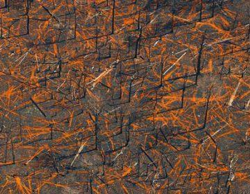 Bushfire Aerials