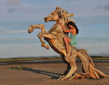 Driftwood animal sculptures