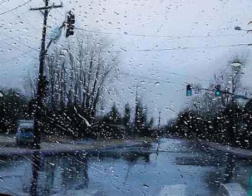 Photorealistic Paintings!!