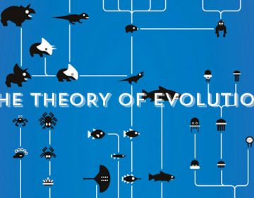 The theory of evolution | Animation Video