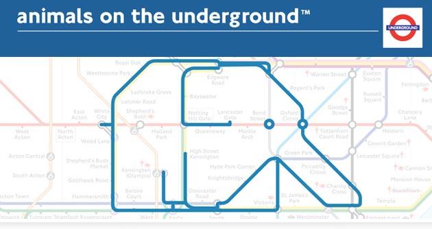 animals on the underground