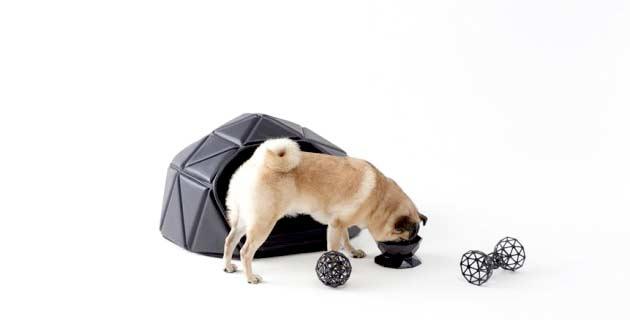 Dog Accessories | Nendo
