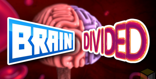 Brain divided | J. Haworth, J. S. Song and J. S.Song