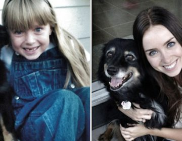 Cute Before and after animals