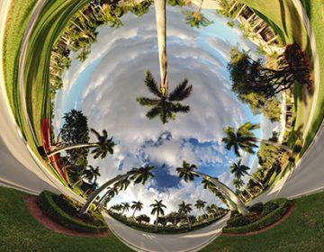 Alternate Perspectives | Randy Scott Slavin