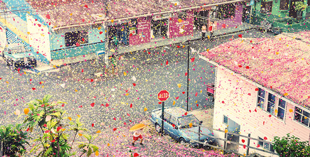 costa rica covered in flower petals for sony