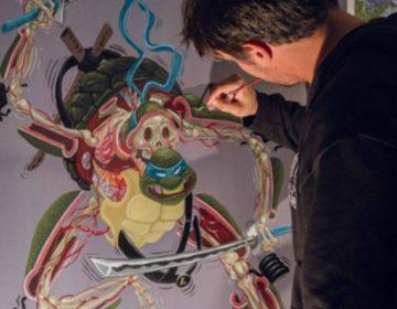 Ninja Turtles anatomy | Nychos