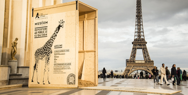 Animal Crates In Paris To Celebrate Zoo's Opening