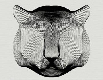 Drawing Animals using Moirée Patterns