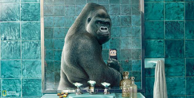 Wildlife selfies | National Geographic