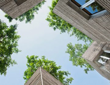 Stacks House for trees | Vo Tong Nghia Architects