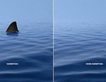 33 Powerful Animal Ad Campaigns