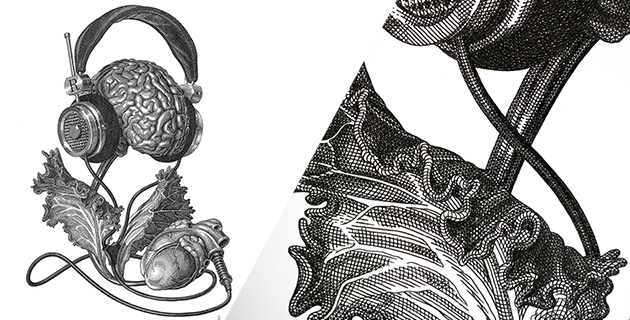 Modern engravings | Olivia Knapp