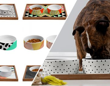 Patterned Dog Bowls | DENY Design