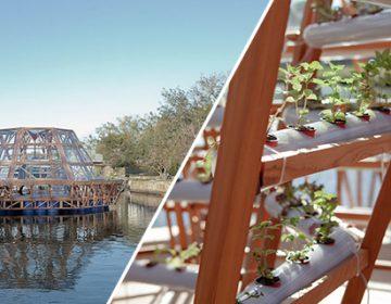 Jellyfish Barge | Studiomobile