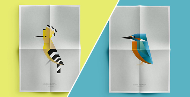 L'Albufera Bird Posters | Manuel Martín