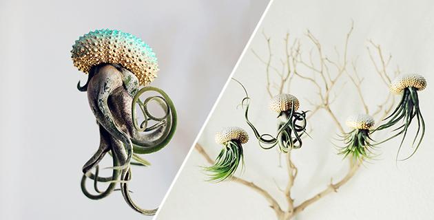 Petit Beast jellyfish planters | Cathy Van Hoang
