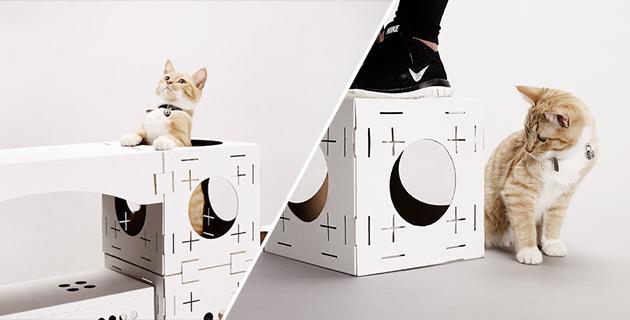 BLOCKS cat playhouse | Poopy Cat