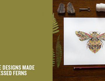 Pressed leaf illustrations | Helen Ahpornsiri