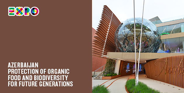 A Milan Expo pavilion every day | Day 8: Azerbaijan