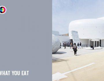 A Milan Expo pavilion every day   Day 25: Korea