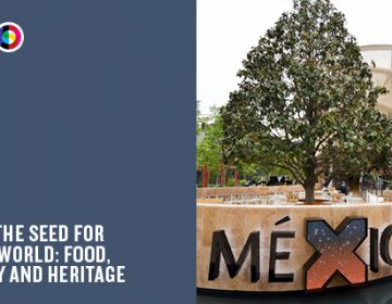 A Milan Expo pavilion every day | Day 16: Mexico
