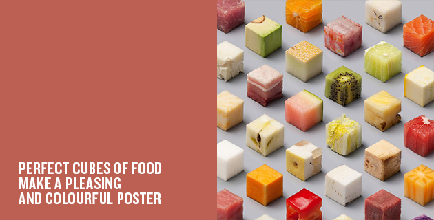 The Food Cube Poster | Lernert & Sander
