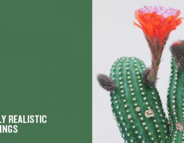 Hyperrealistic Cactus Paintings | Kwang-Ho Lee