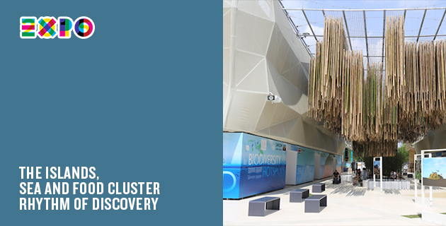 A Milan Expo Pavilion Every Day | Day 71: The Islands, Sea and Food Cluster