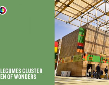 A Milan Expo Pavilion Every Day | Day 69: The Fruits and Legumes Cluster