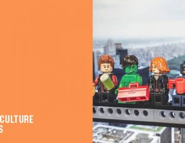 LEGO POP CULTURE FIGURINES | JULIEN DAVID
