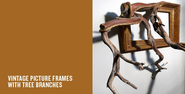 Tree Branches Picture Frames | Darryl Cox