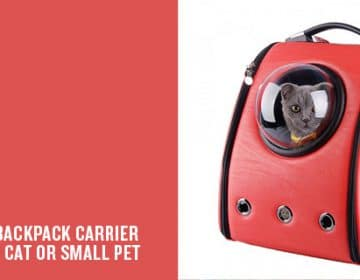 BAckpack for your pet | U-Pet