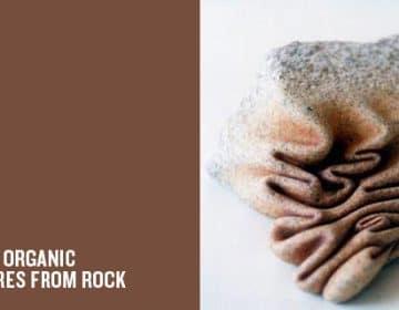 Organic Rocks | José Manuel Castro López